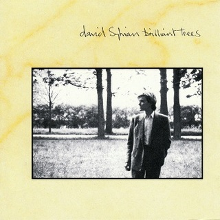 David_Sylvian-Brilliant_Trees_(album_cover).jpg